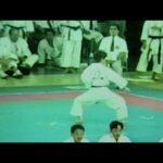 1995年『沖縄空手古武道世界大会・プレ大会』劉衛流(山口正舟撮影)