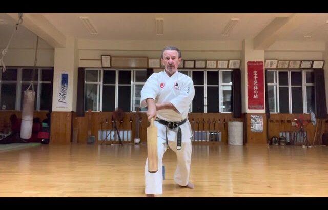 Explanation: Ekudi #信武舘 #古武道 #karate #shimbukan #okinawa #kobudo #空手 #karate #日本文化