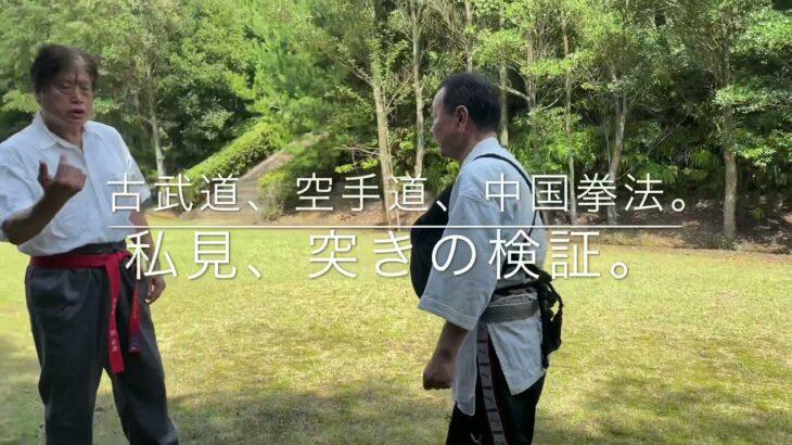 空手道、古武道、中国拳法、の突きを検証。