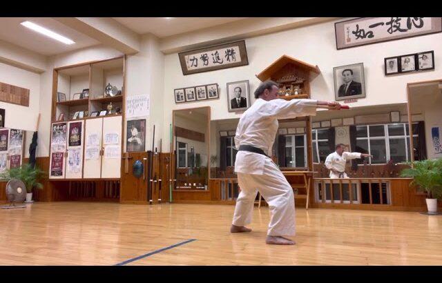 7th Dan practice #信武舘 #古武道 #karate #shimbukan #okinawa #空手 #kobudo #japan #沖縄