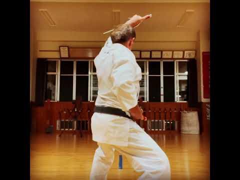 """Chikinshitahaku nu Sai"" #信武舘 #古武道 #karate #shimbukan #okinawa #空手 #kobudo #沖縄 #"