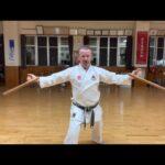 """Hamahiga nu Tunfa"" segment explained #信武舘 #古武道 #karate #shimbukan #okinawa #okinawa #沖縄 #空手"