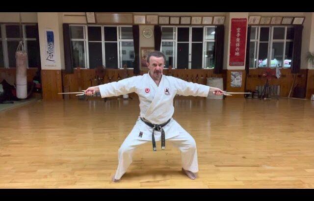 """Tawada no Sai (Tada nu Sai)"" segment explained #信武舘 #古武道 #karate #shimbukan #kobudo #japan #沖縄 #空手"
