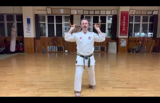 """Yaragwa nu Tunfa"" opening segment explained #信武舘 #古武道 #karate #shimbukan #okinawa #空手 #kobudo"