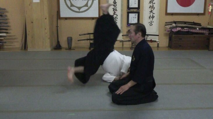 古武道 大東流合気柔術武門 円・呼吸・反射 触れる技から触れない技へ