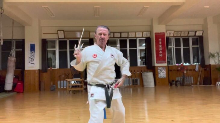 """Chikinshitahaku"" nu Sai segment explained #信武舘 #古武道 #karate #shimbukan #okinawa #空手 #kobudo #沖縄"