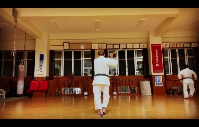 Sakugawa Dai 佐久川ヌ棍大 #信武舘 #古武道 #karate #shimbukan #okinawa #空手 #kobudo #沖縄