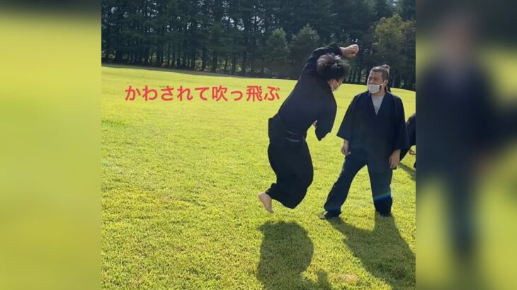 手刀を捌く 剣の理での柔術 古武術の世界