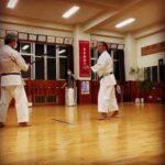 Bo vs Kumitekko #karate #okinawa #空手 #沖縄 #信武舘 #古武道 #shimbukan #kobudo